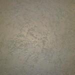 grafiato-caracol-2